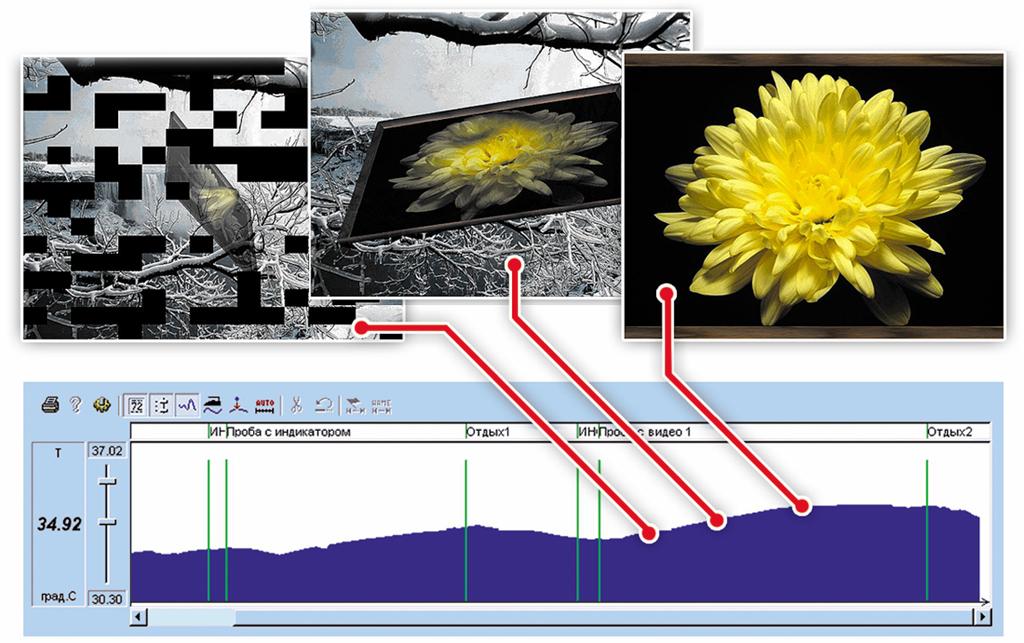 Пример визуальной биологической обратной связи по температуре